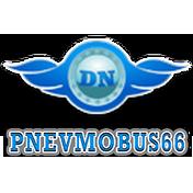 Damir Kv